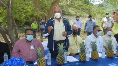 Photo of Agricultura lanza proyecto de lagunas